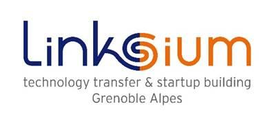 logo_linksium.jpg
