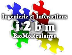 i2bm_logo_tr.png